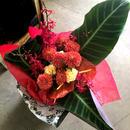 紅華(花束)