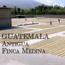 【100g】グアテマラ アンティグア フィンカ メディナ(中煎り)