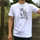 猫とカエルのTシャツ「なかよし?」(ホワイト)男女兼用【受注生産・送料無料】