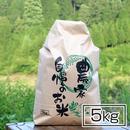【今だけ送料無料! 】おいしいお米  5キロ 半分のハーフサイズ・低農薬コシヒカリ 5kg  毎日精米!