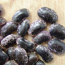 ほっこり煮えます!!片品産紫花豆!!28年産 500g