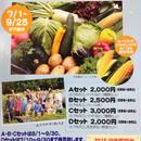 もろこしと旬なお野菜!尾瀬直送便(*^。^*)夏の味覚セットA 尾瀬のトマトができました お試しに