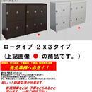 【激安/ネット最安値】鍵付き下駄箱/鍵付きロッカー2x3段 ロータイプ 完成品