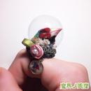 フィンチのリング(赤・緑)