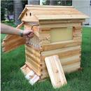蜂蜜がでてくるミツバチのお家♪養蜂 木製 蜂の巣 ハニーフローハイブ 7ピースフレーム 養蜂ツール 組み立て式