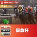 阪急杯(G3)