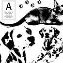 ビッグアニマル/PET .1