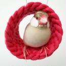 ホヨヨ ボール  rose red