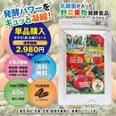 【単品購入】野菜果物発酵食品
