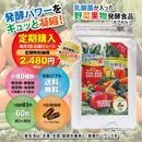 【定期購入】野菜果物発酵食品