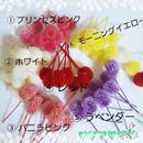 【再販❁】千日紅❁プリザーブド (カラー選択・同色10個)