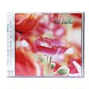 Fil-lache(新生の音)/Mia fare