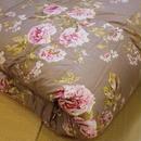 東京西川 羽毛布団 シングルサイズ K7053 SL