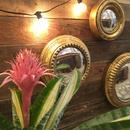 Gold Leaf Found Wall mirrors