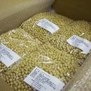 無農薬大豆トヨマサリ 4kg