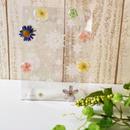 お花のおはじきフォトフレーム(size:サービス版対応) ※送料無料