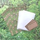 nemunoki :森のフクロウたち レターセット