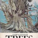 TREES / ANDREAS FEININGER