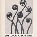 KARL BLOSSFELDT 1865-1932 DAS FOTOGRAFISCHE