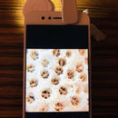 モバイル顕微鏡L-eye Field + Light