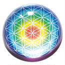 """""""flower of life"""" rainbow glass paper weight (so004)"""