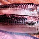 ノルウェー鯖の文化干(1枚)