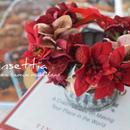【限定】ポインセチア花かんむり