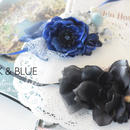【限定】BLACK or BLUE ?