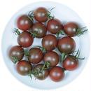 -井出トマト農園- ミニトマト トスカーナバイオレット