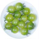 -井出トマト農園- ミニトマト サングリーン