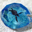 アオウミガメ(turtle150)