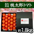 限定品 トマト大箱詰め(約1.8㎏) 送料1箱800円 2箱以上お買い上げで送料無料