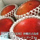 沖縄宮古島産アップルマンゴー2kg