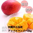 【お中元用】沖縄宮古島産アップルマンゴー美麗品2kg