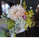 maru  春のお花畑  ピンク