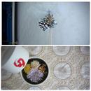 "Holiday set☆  ""rakugan"" & ""first snow"""