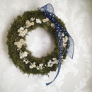 "moss Wreath ""classical dot"""