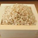 平成30年新米 有機無農薬栽培のお米(玄米)収穫!!  🌾啓造さんのおこめ2kg🌾
