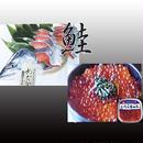 送料無料!漁師直送 夏の厳選ギフト - 新巻鮭「めぢか」半身・いくらセット
