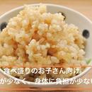 まとめ買いの方(白米)身体に負担がすくないお米。化学肥料不使用ササニシキ 10kg