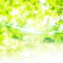 発達障がい講座応用編まで受講の方限定☆空想癖の正体(修正文付)