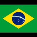 ブラジル トミオフクダ サンドライ 200g 【中深煎り】