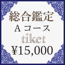 総合鑑定<Aコース>用1,5000円チケット