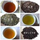 自然栽培(無農薬・無肥料) 紅茶・煎茶・釜炒り日干茶【世界CHAセット】 [加茂自然農園] made in 京都府