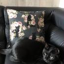 黒猫クッションカバー【花と黒猫】
