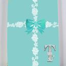 銀イニシャル入り!ラインレース&リボン柄(ティファニーブルー)パスポートケース