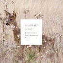 音楽CD「WINDFALL LIGHT」 Various Artists