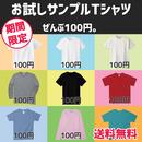 初めてのTシャツは100円!【DM便/送料無料】