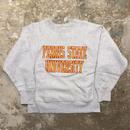 80's Champion REVERSE WEAVE Sweatshirt FERRIS STATE.U (SIZE : M)