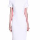 Color Back Shift Dress (カラーバック・シフトワンピース)